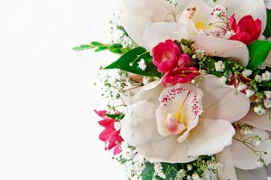 Orchids Delivery UK