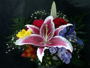 Flowers Delivery Lilies