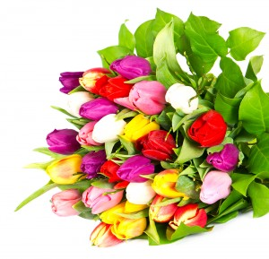 Delivery Tulips Bouquets UK