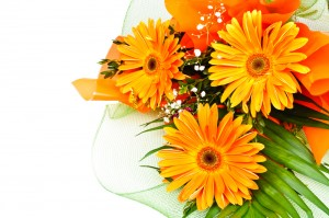 Flower Delivery in South West England